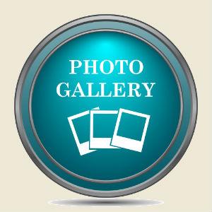 Garage door & gate photo gallery button